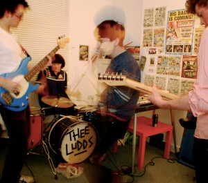 Thee Ludds, Human Hair y Slowcoaches